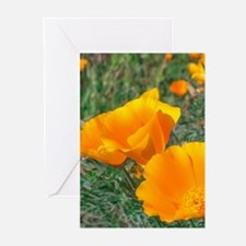 . Greeting Cards (Pk of 10)