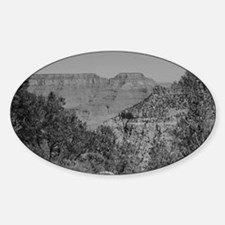 Grand Canyon B&W Decal