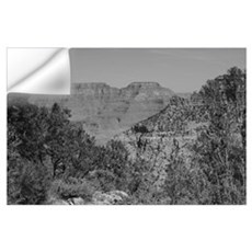 Grand Canyon B&W Wall Decal