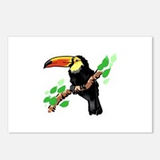 Toucan Postcards (Package of 8)