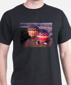 Hot Air Balloons 6 T-Shirt