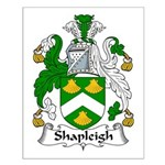 Shapleigh Family Crest Small Poster