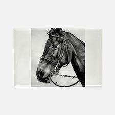 horseshead1.JPG Magnets