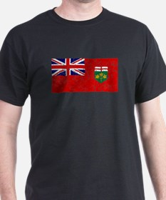 Worn Ontario Flag T-Shirt