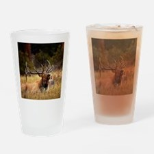huntin elk Drinking Glass