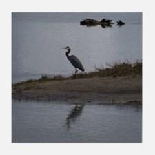 Great Blue Heron Tile Coaster