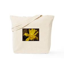 Cute Summer chairs Tote Bag