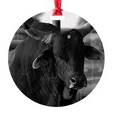Bull riding Ornaments