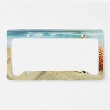 Starfish on Beach License Plate Holder