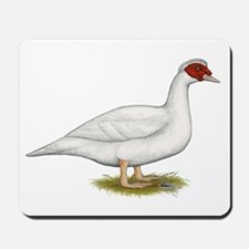 Duck White Muscovy Mousepad