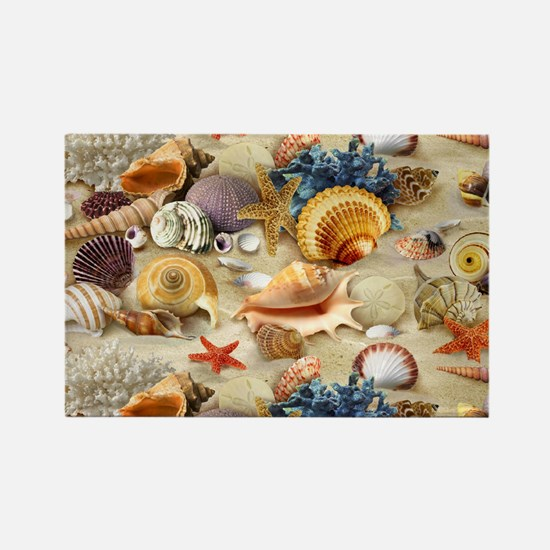 Sea Shells Magnets