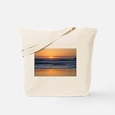 Unique Womens beach tote Tote Bag