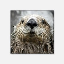 """Sea Otter 11 Square Sticker 3"""" x 3"""""""