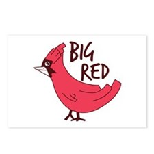 Big red cardinal Postcards (Package of 8)