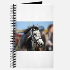 Portrait of the Grey Race Horse Journal
