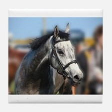 Portrait of the Grey Race Horse Tile Coaster