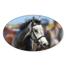 Portrait of the Grey Race Hor Decal