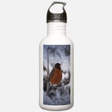 nature winter robin bi Water Bottle