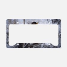 nature winter robin bird License Plate Holder