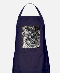 Echoes Of The Past Apron (dark)
