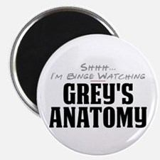 "Shhh... I'm Binge Watching Grey's Anatomy 2.25"" Ma"