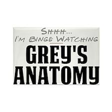Shhh... I'm Binge Watching Grey's Anatomy Rectangl