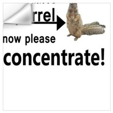Concentrate on the squirrel Wall Decal