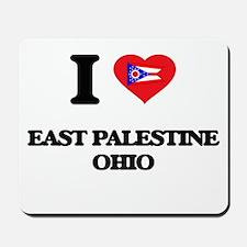 I love East Palestine Ohio Mousepad