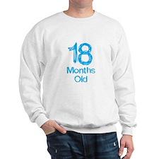 18 Months Old Baby Milestones Sweatshirt
