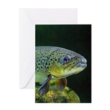 BROWN TROUT Greeting Cards