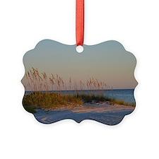 Florida Snow Drifts Ornament
