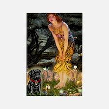 Fairies & Black Pug Rectangle Magnet