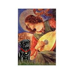 Mandolin Angel / Black Pug Rectangle Magnet (10 pa