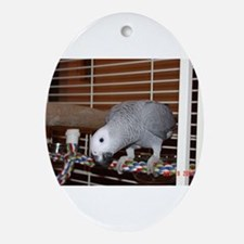 African Gray Oval Ornament