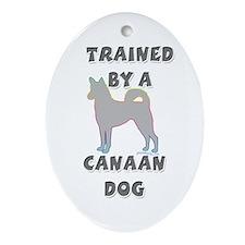 Canaan Slvr Oval Ornament