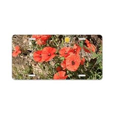Poppies growing on El Camin Aluminum License Plate