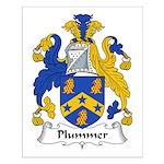Plummer Family Crest Small Poster