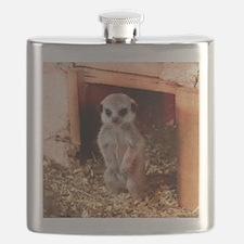 Baby Meerkat Flask