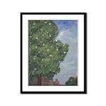Magnolia Tree in City Park Framed Panel Print