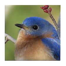 Bluebird Tile Coaster