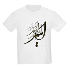 Amir Persian Calligraphy 1 T-Shirt