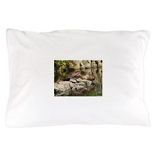 Chairs Pillow Case
