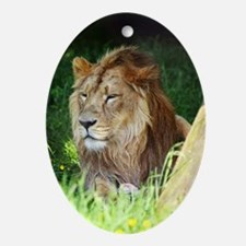 Lion Oval Ornament
