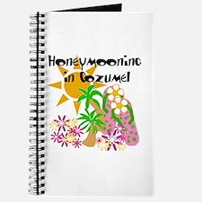 Honeymoon Cozumel Journal