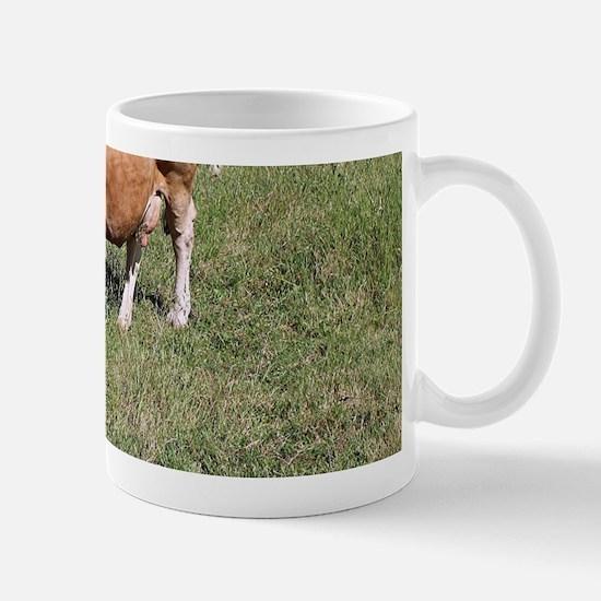 Cows in field on El Camino, Spain Mugs