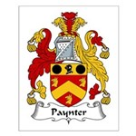 Paynter Family Crest Small Poster