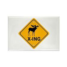 Moose X-ing Rectangle Magnet (100 pack)