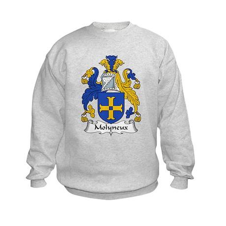 Molyneux Family Crest Kids Sweatshirt