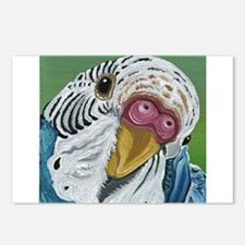 Budgie Parakeet Postcards (Package of 8)