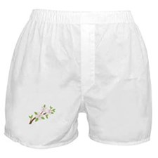 Dogwood Flowers Tree Branch Boxer Shorts
